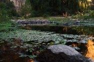 Reserva-natura-San-Marcos-Sierra-(6)
