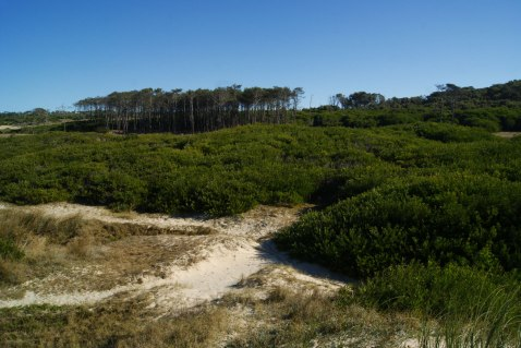dunas-parque-santa-teresa