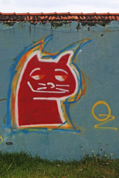 gato-en-el-vecindario