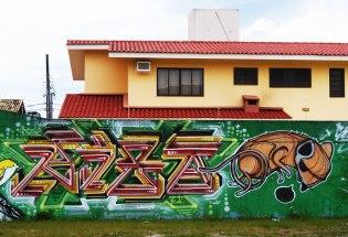 mural-tras-condominio