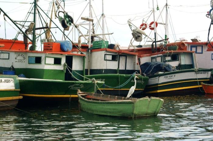 barcos-angra
