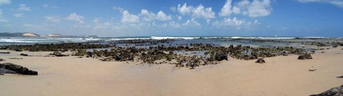 corales-en-praia-do-centro